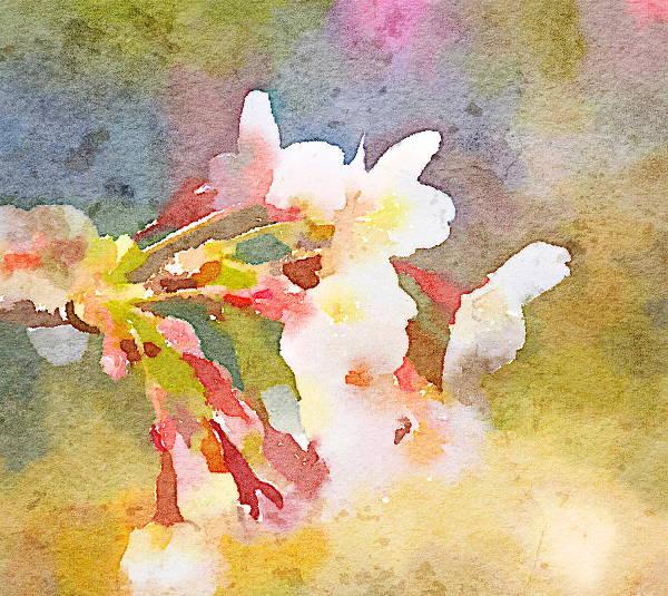 digital-watercolour-painting