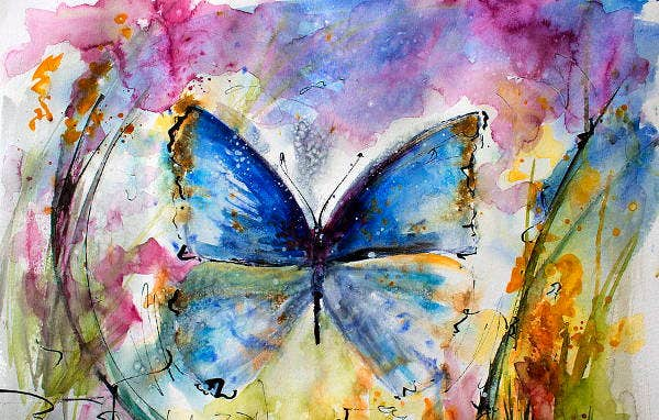 Watercolour Butterfly Painting