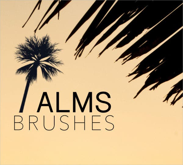 palm tree brushes photoshop