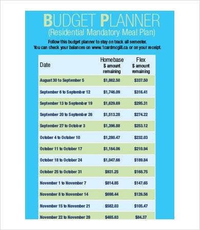 Free Budget Planner - 9+ Free PDF Documents Download | Free ...