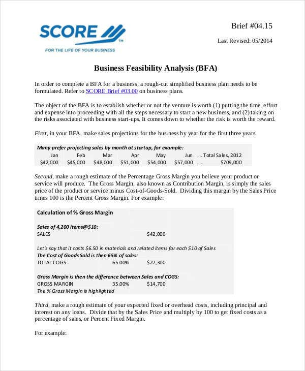 Feasibility analysis templates 8 free word pdf for Business feasibility study template free download