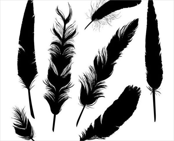 vector feather brushes