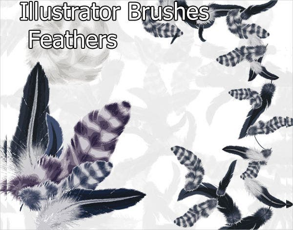 Graphic Feathers Brushes