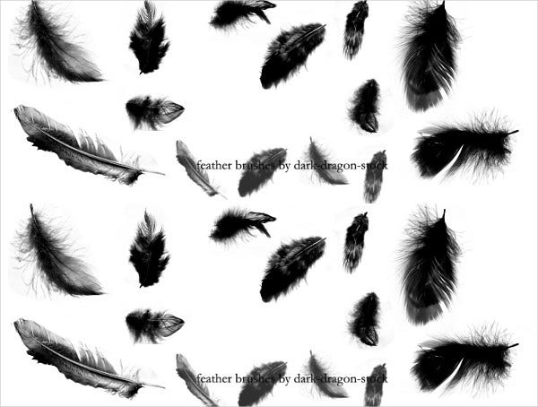 Free Feather Brushes