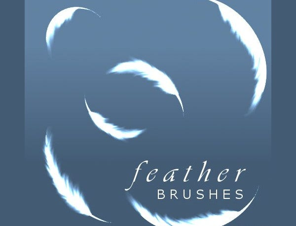 Feather Brushes Free Download