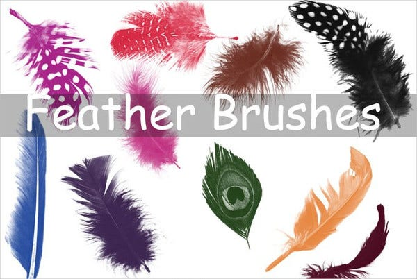 16 Large Feather Brushes