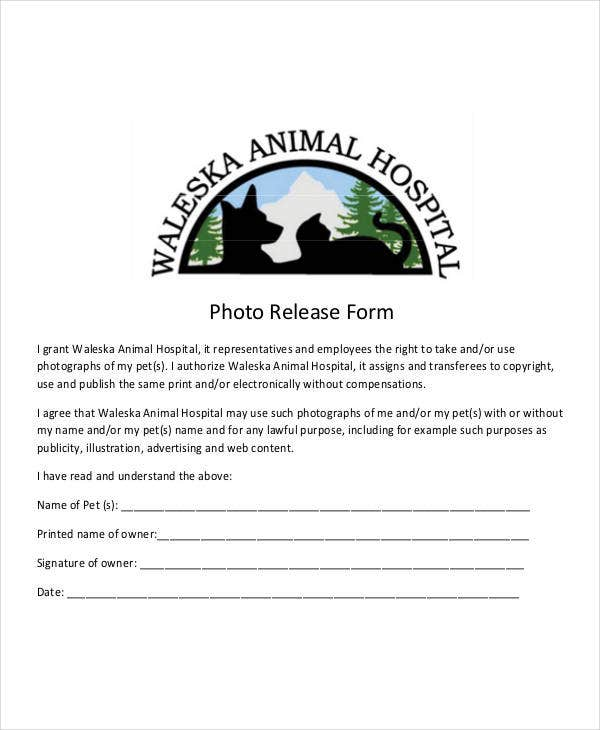animal photo release form template