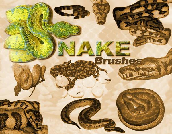 snake brushes photoshop