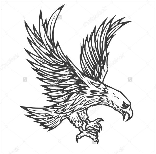 flying-eagle-vector