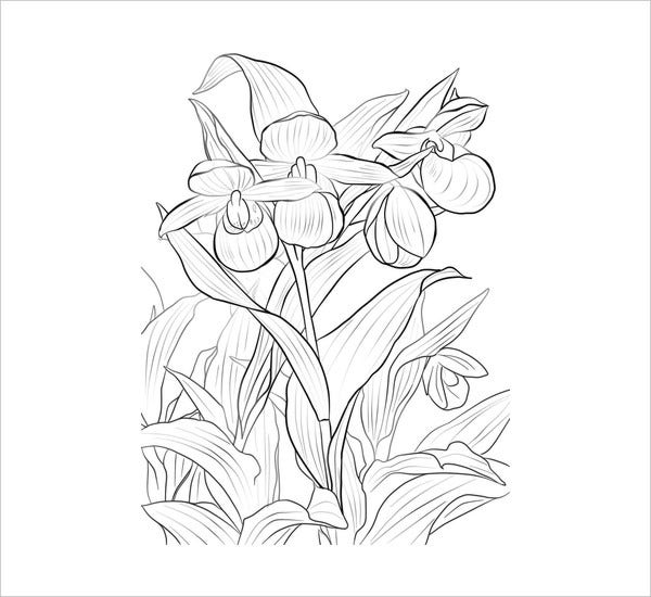 Flower Cool Coloring Page