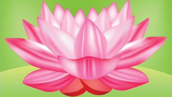 flowervectorfeatureimages