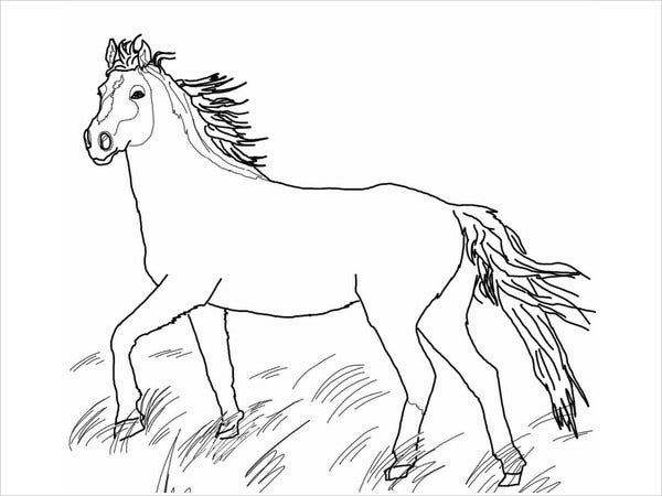 9+ Horse Coloring Pages - Free PDF Document Download Free & Premium  Templates