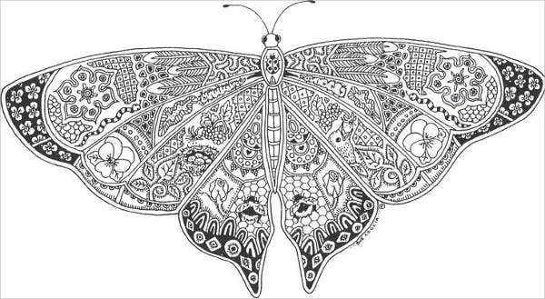 9+ Butterfly Coloring Pages | Free & Premium Templates - photo#20