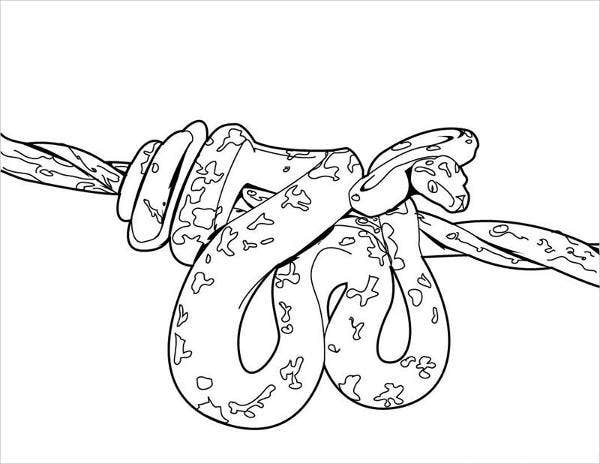 snake outline coloring pages - photo#35