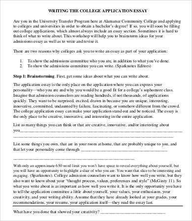 College Application Essay Format Template