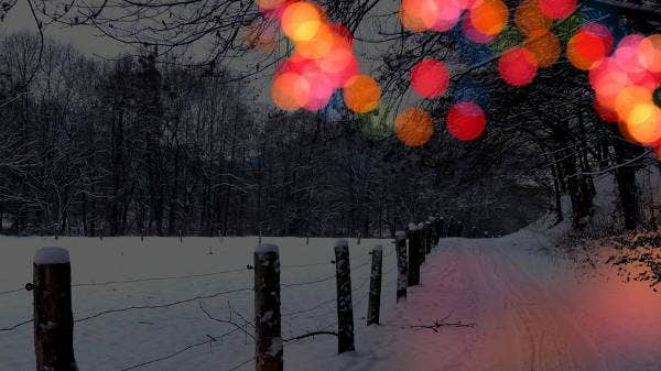 winter bokeh photography