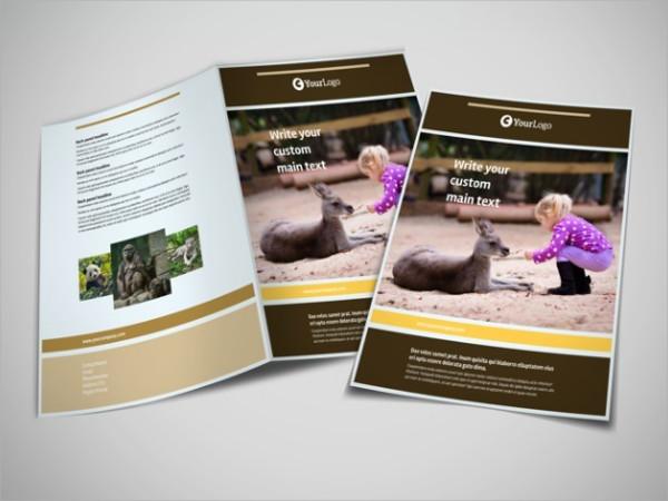 bi fold zoo brochure