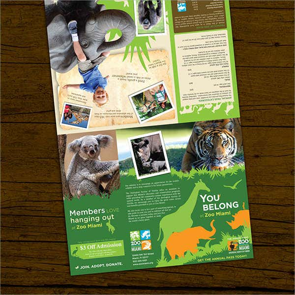 Zoo Membership Brochure