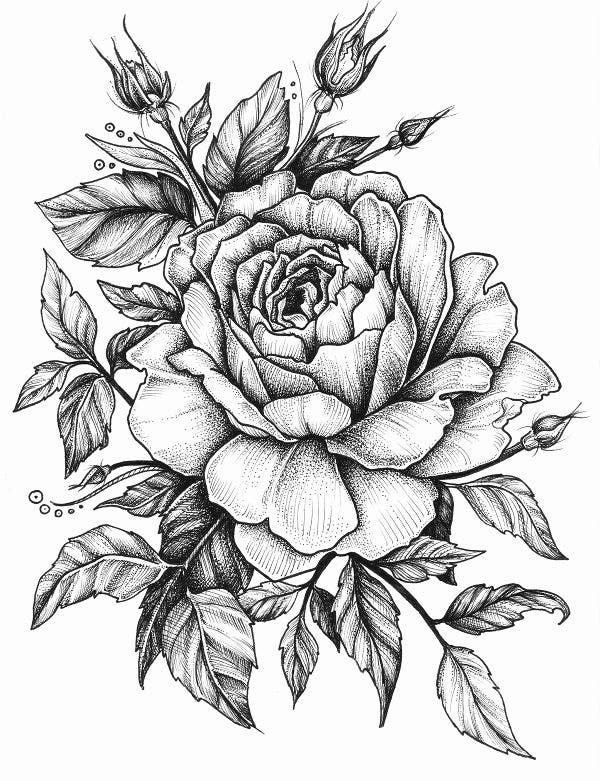 rose-flower-artwork