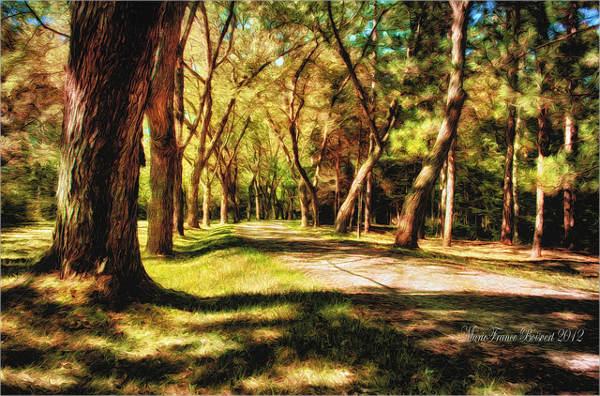 vintage-tree-painting