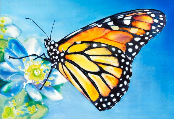 10+ Beautiful Butterfly Painting Ideas | Free & Premium ... Easy Acrylic Flower Paintings On Canvas