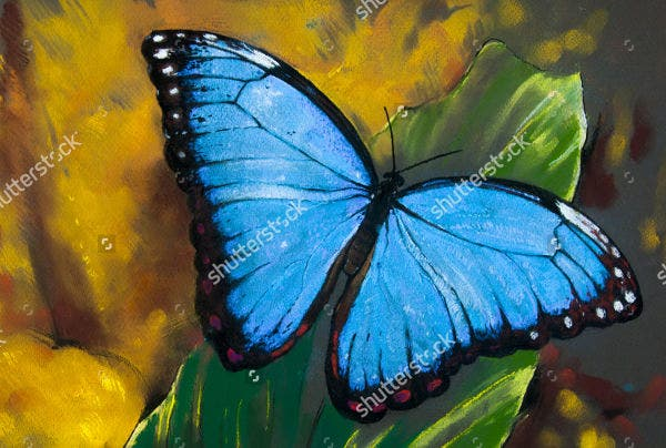 10 Beautiful Butterfly Painting Ideas Free Amp Premium