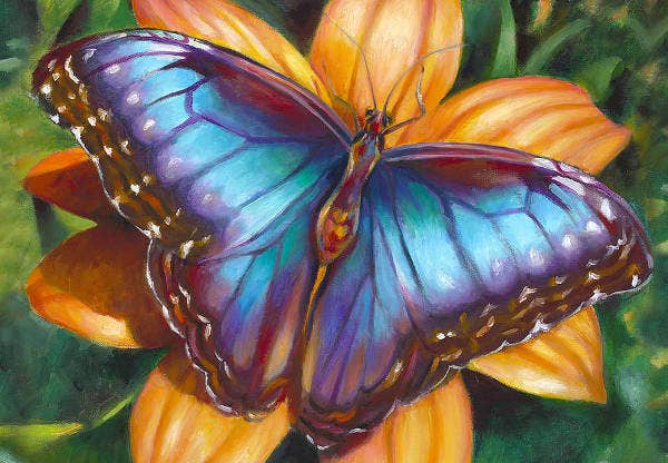 10+ Beautiful Butterfly Painting Ideas | Free & Premium ...