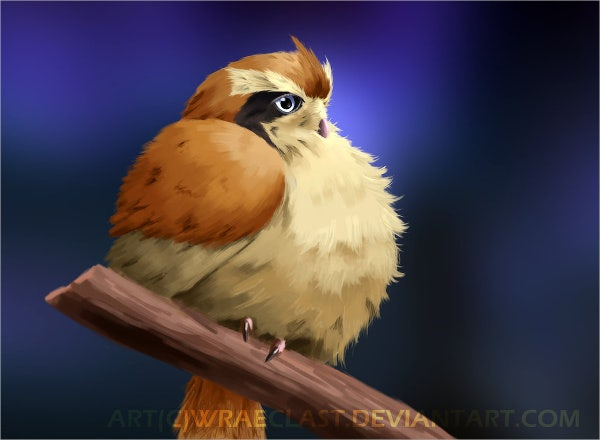 realistic-bird-painting
