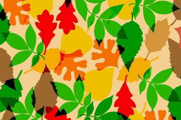vector-fall-texture