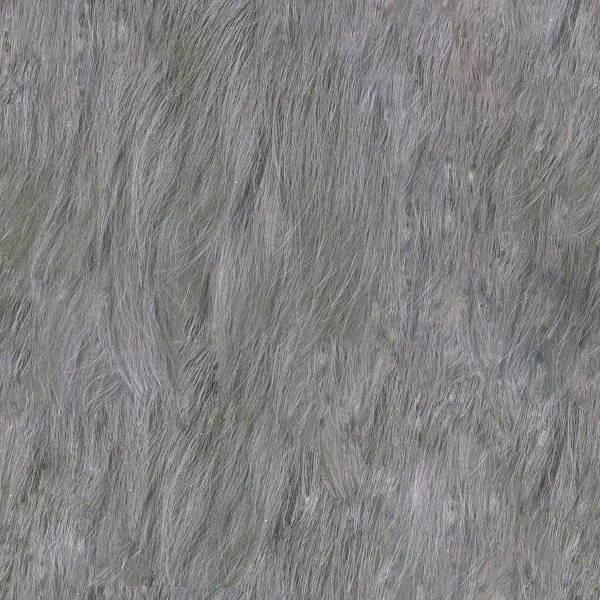 seamless-fur-texture