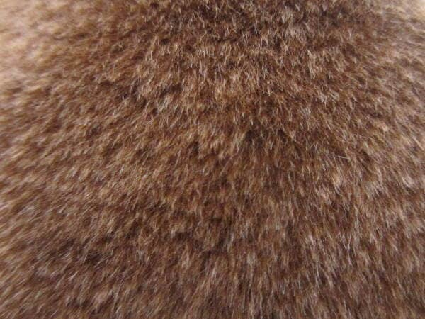 brown-fur-texture