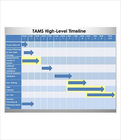 project management high level timeline