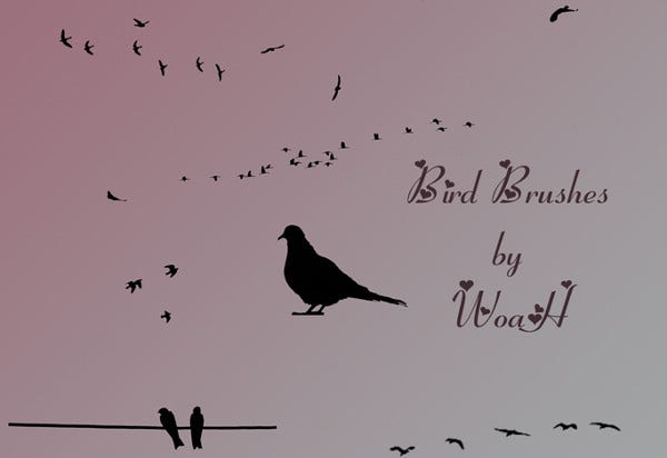 Bird Silhouette PS Brushes