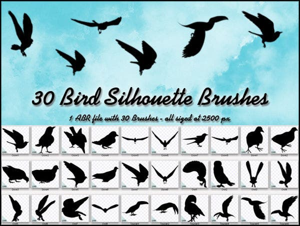 30 bird silhouette brushes
