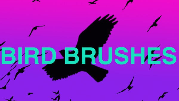 birdbrushes