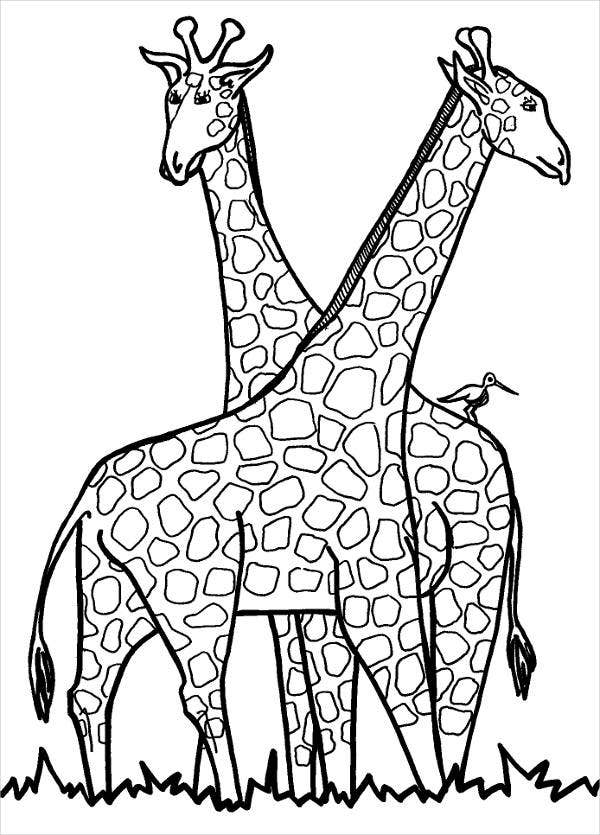 Giraffe in Love Coloring Page