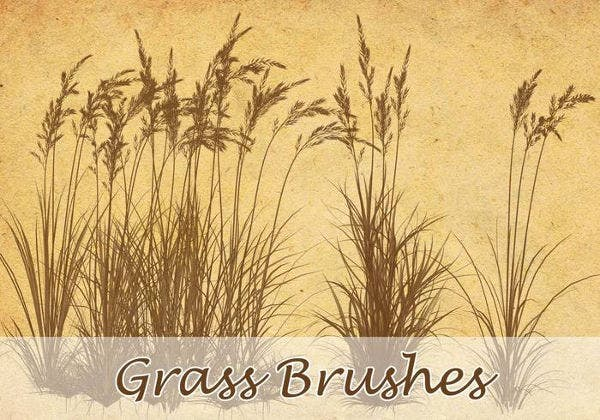 vintage grass brushes