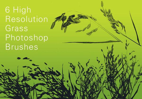 6 Free High Resolution Grass Brushes