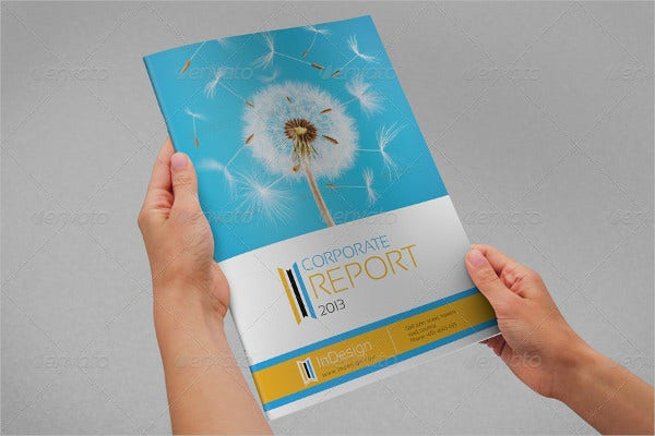 Wonderful Corporate Annual Report Brochure