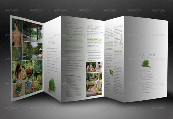 elegant accordion style brochure