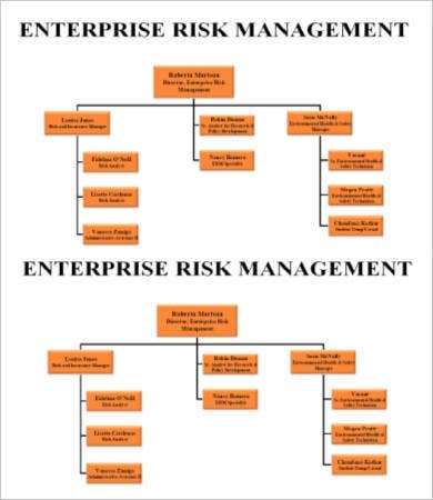 Enterprise Risk Management Organizational Chart Template