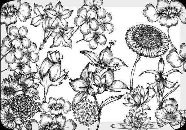 hand-drawn-floral-leaf-brushes