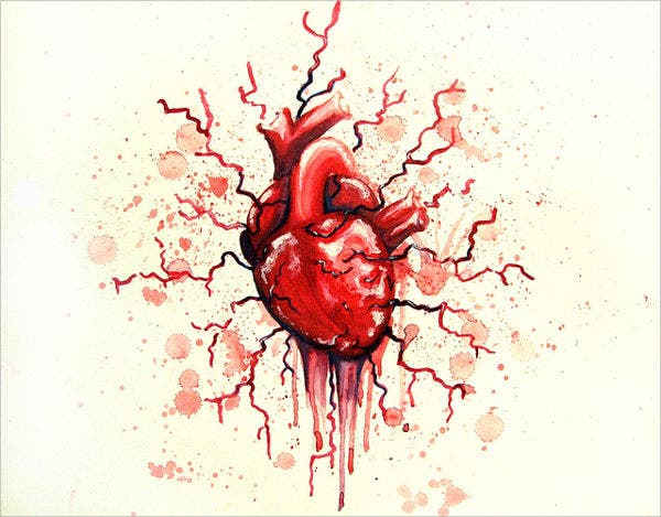 Bleeding Heart Drawing