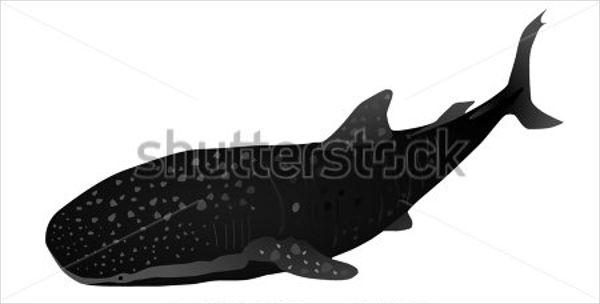 whale-shark-silhouette