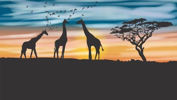 giraffesilhouettes