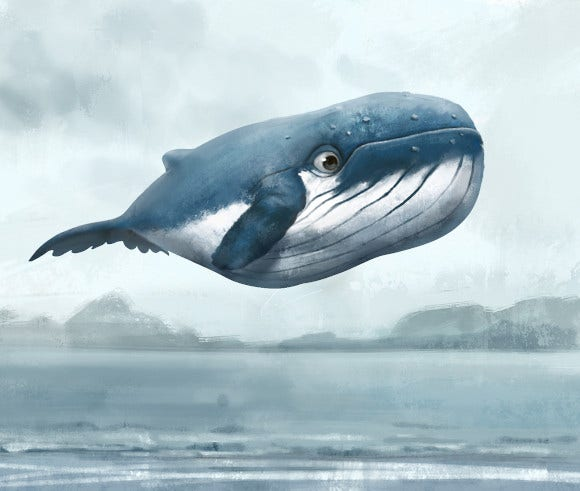 flying whale logo