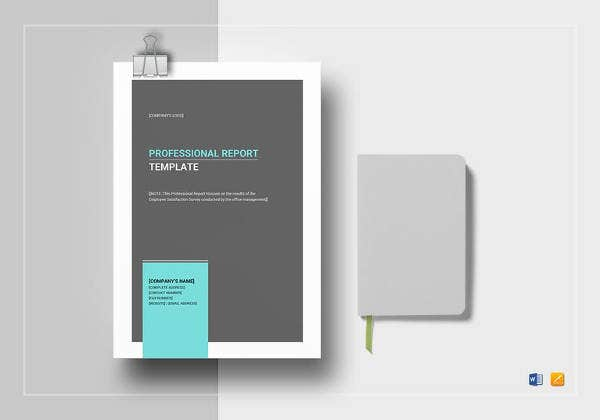 Professional Report Template Word   Free Sample Example Format