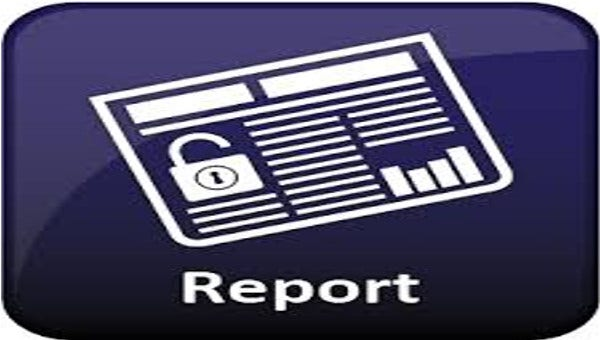 sample project report formats1