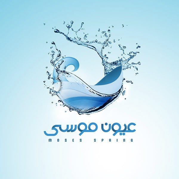 water logo design1
