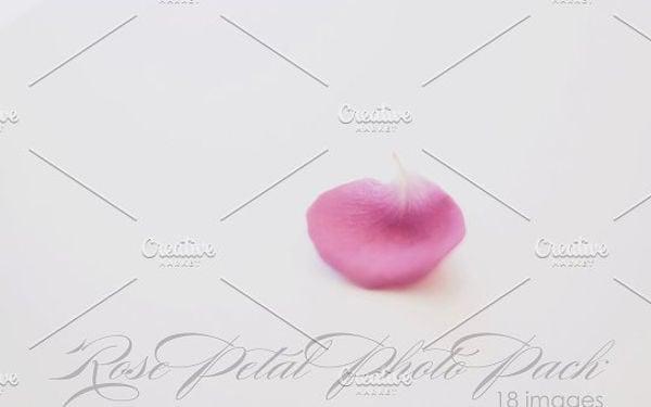 rose-petal-texture